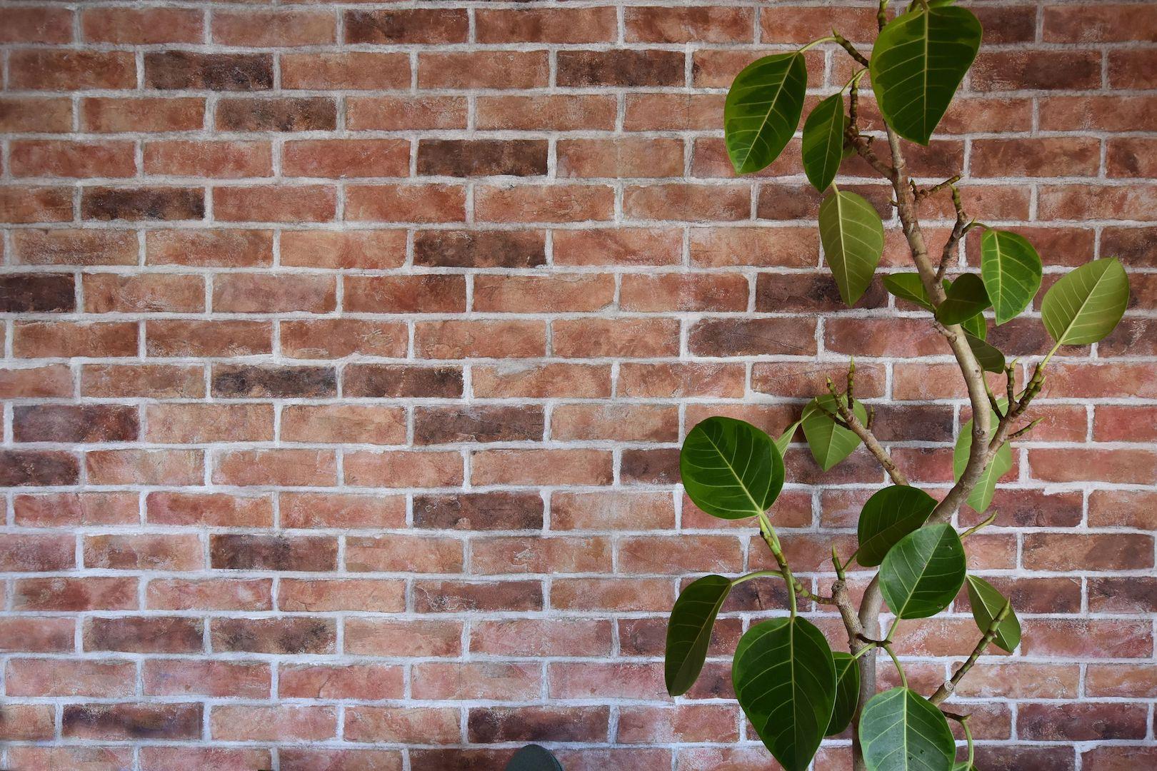 vol37. デザインコンクリート、どんな風に施工する?